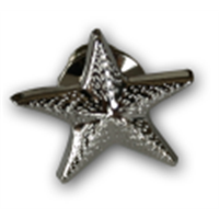 Respecting Choices® 004 Starfish Pin