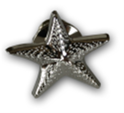 RC 004 Respecting Choices® Starfish Pin